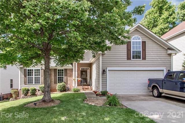 126 Foxtail Drive, Mooresville, NC 28117 (#3739154) :: LKN Elite Realty Group | eXp Realty