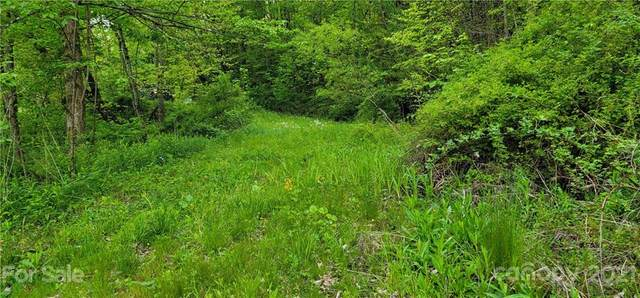 Lot 3 Brigham Drive Lot 3 Sec D, Waynesville, NC 28785 (#3739715) :: Mossy Oak Properties Land and Luxury