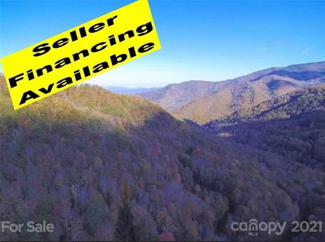 99 Deep Gap Road, Burnsville, NC 28714 (#3743607) :: Puma & Associates Realty Inc.