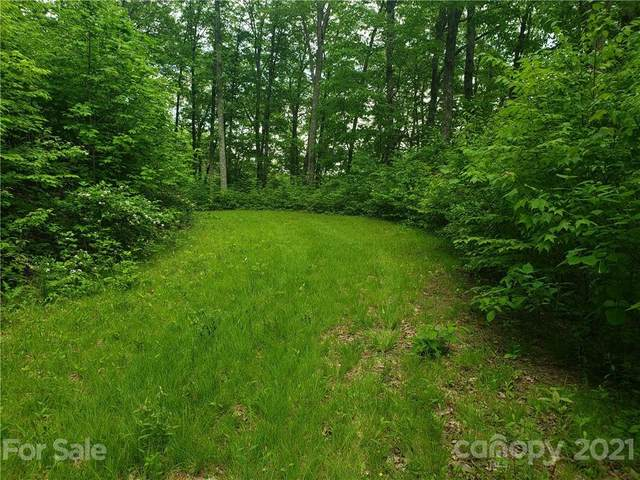 000 Deep Gap Road, Whittier, NC 28789 (#3744511) :: The Premier Team at RE/MAX Executive Realty