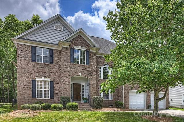 14212 Stewarts Bend Lane, Charlotte, NC 28277 (#3745596) :: Home and Key Realty