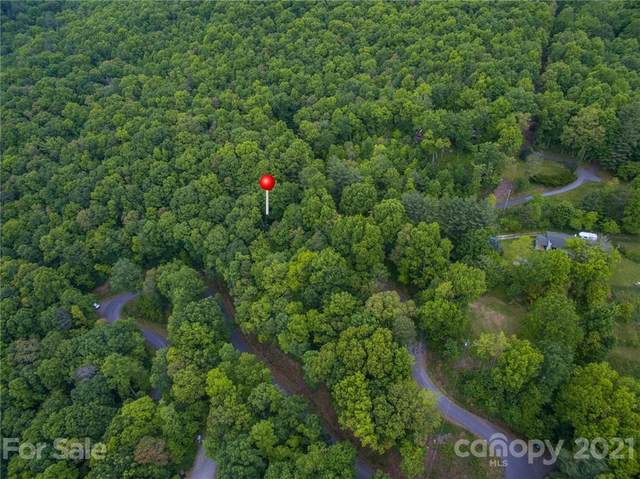 99999 Spring Mountain Road, Fairview, NC 28730 (#3746061) :: Modern Mountain Real Estate