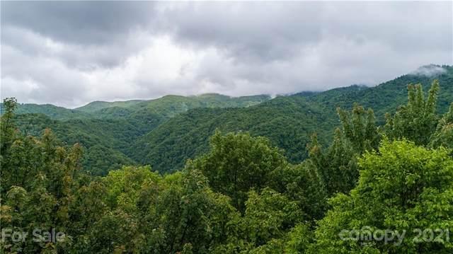 9999 Bear Wallow Ridge Trail #46, Sylva, NC 28779 (#3747743) :: Odell Realty