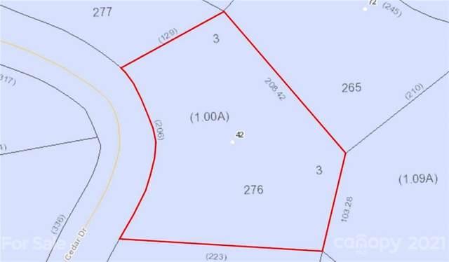 42 Cedar Drive #276, Mills River, NC 28759 (#3750643) :: LePage Johnson Realty Group, LLC