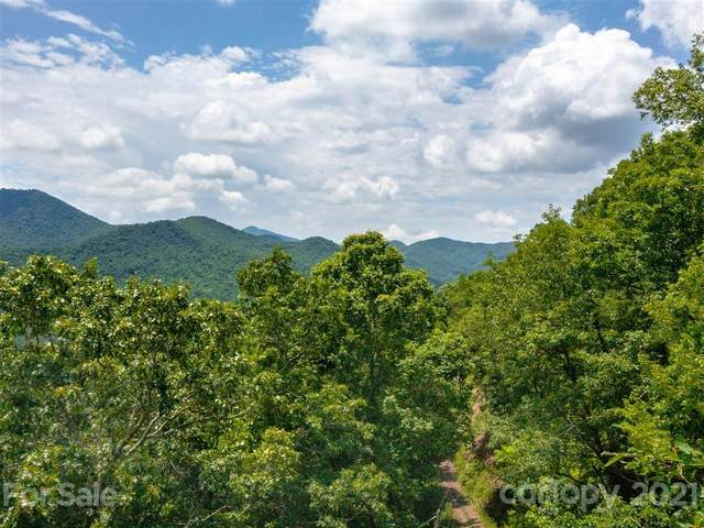 163 and 21 Long Winding Road, Sylva, NC 28779 (#3750713) :: The Snipes Team | Keller Williams Fort Mill