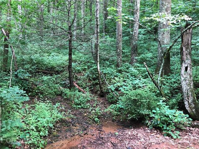 0 Shadow Brook Drive #3, Flat Rock, NC 28731 (#3751205) :: Mossy Oak Properties Land and Luxury