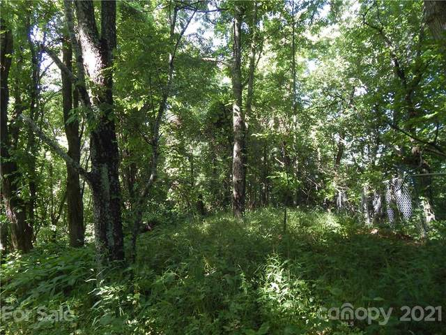Lot 55 Rock House Cove Road, Clyde, NC 28721 (#3752674) :: NC Mountain Brokers, LLC