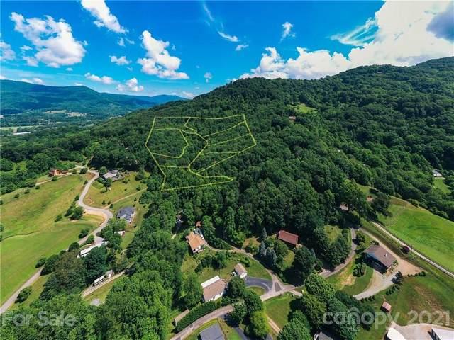 305 Erwin Lane, Waynesville, NC 28785 (#3752697) :: LePage Johnson Realty Group, LLC