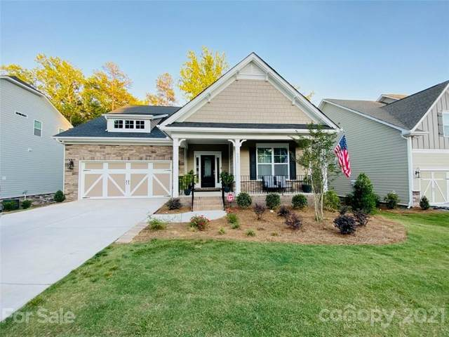 9533 Spurwig Court, Charlotte, NC 28278 (#3752838) :: Lake Wylie Realty