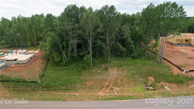 4032 Brandy Creek Court, Clover, SC 29710 (#3755026) :: Willow Oak, REALTORS®