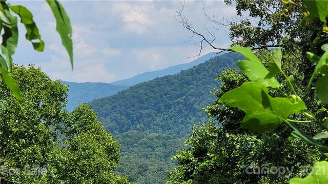 Lot 4 Mountain Watch Drive, Waynesville, NC 28785 (#3757046) :: LePage Johnson Realty Group, LLC