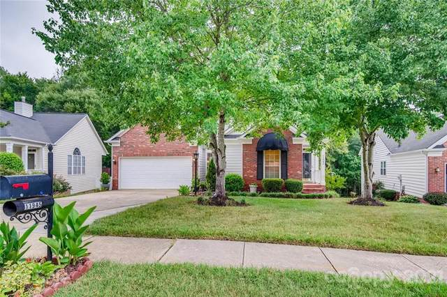 11945 Song Sparrow Lane, Charlotte, NC 28269 (#3760507) :: Carolina Real Estate Experts