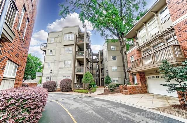 554 Oakland Avenue, Charlotte, NC 28204 (#3761115) :: BluAxis Realty