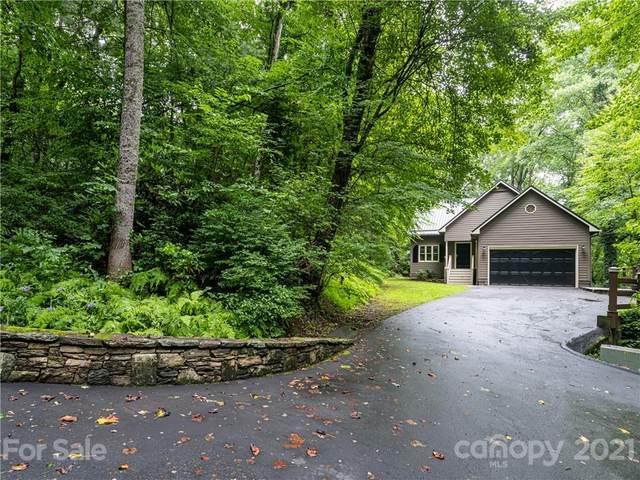 144 Reynolds Wood Drive, Brevard, NC 28712 (#3761917) :: BluAxis Realty