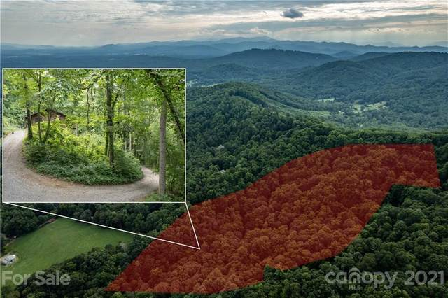 91 Green Mountain Lane, Fletcher, NC 28732 (#3762727) :: Home Finder Asheville