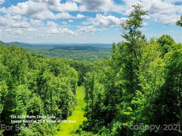 LOT 2100 Harm Creek Loop, Mill Spring, NC 28756 (#3762795) :: LePage Johnson Realty Group, LLC