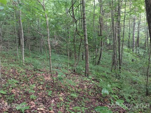 0 Ike Woods Road, Bakersville, NC 28705 (#3763818) :: LePage Johnson Realty Group, LLC