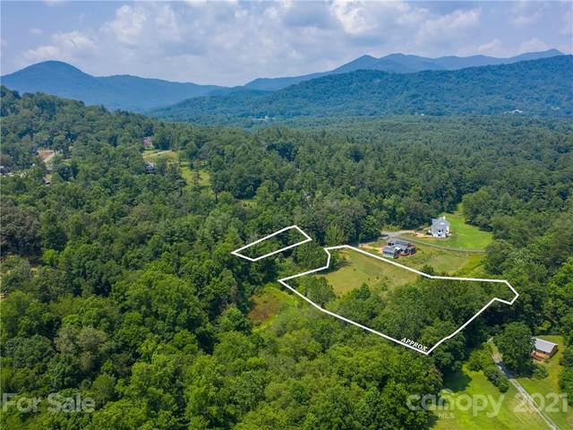 12 Parkland Grove 97/97A, Asheville, NC 28805 (#3765930) :: Home and Key Realty