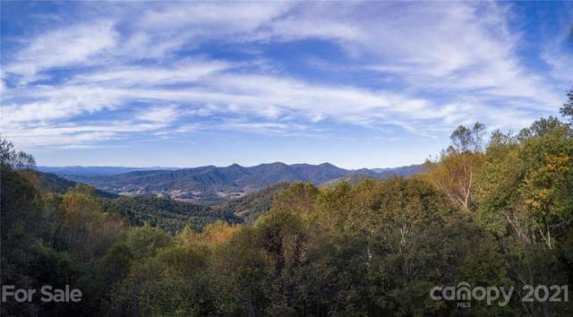 50 Sassafras Gap Road, Asheville, NC 28804 (#3766403) :: Love Real Estate NC/SC
