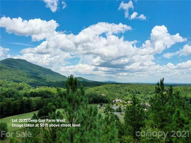 LOT 2022 Deep Gap Farm Road, Mill Spring, NC 28756 (#3768734) :: LePage Johnson Realty Group, LLC