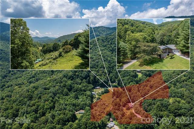 61 Grapevine Cove, Waynesville, NC 28785 (#3770806) :: BluAxis Realty