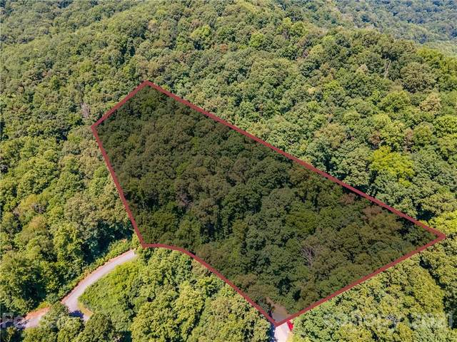 Lot 41 Mountain Watch Drive, Waynesville, NC 28785 (#3771284) :: LePage Johnson Realty Group, LLC
