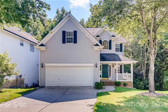 14006 Wild Elm Road, Charlotte, NC 28277 (#3771480) :: Homes with Keeley | RE/MAX Executive