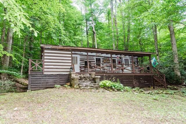 101 Cold Spring Road, Burnsville, NC 28714 (#3772181) :: Exit Realty Elite Properties