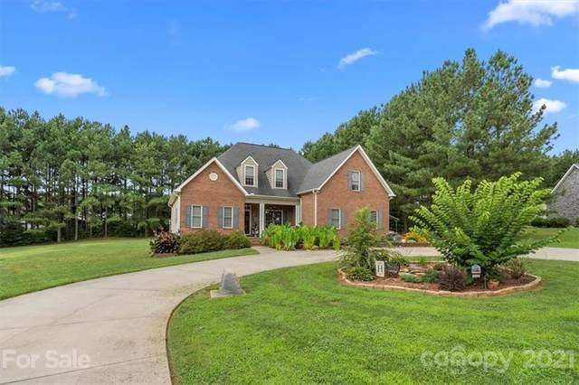 131 Dupree Lane, Mooresville, NC 28115 (#3773152) :: Puma & Associates Realty Inc.