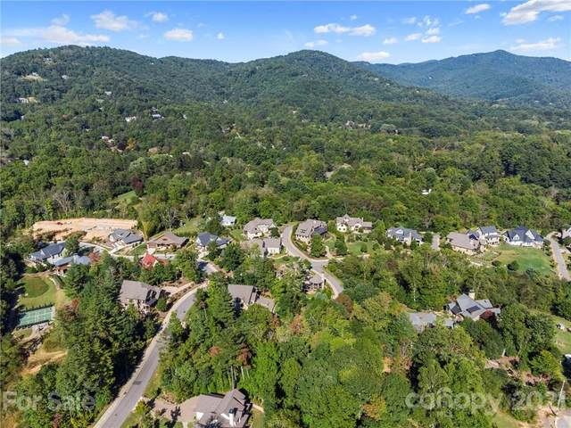 11 Magnolia View Trail Lot 24, Asheville, NC 28804 (#3773965) :: Mossy Oak Properties Land and Luxury