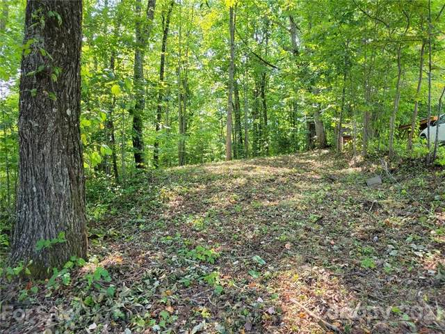 00 Tanner Trail #39, Waynesville, NC 28785 (#3774241) :: MOVE Asheville Realty