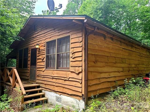 83 Snowy Cove Lane, Black Mountain, NC 28711 (#3778086) :: Premier Realty NC