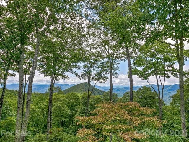 379 Sweet Fern Way, Sylva, NC 28779 (#3778183) :: Love Real Estate NC/SC