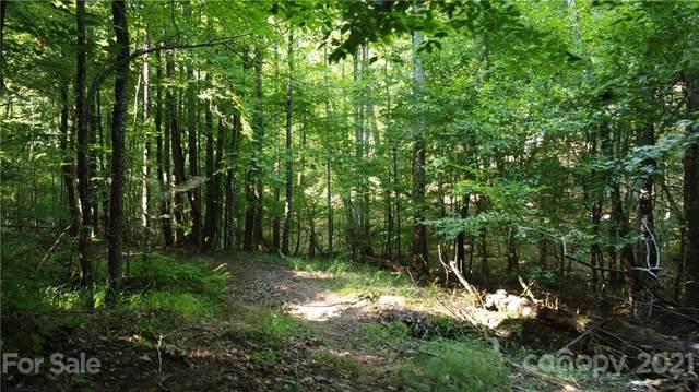 99999 Holbert Cabin Lane, Tryon, NC 28782 (#3778756) :: Robert Greene Real Estate, Inc.