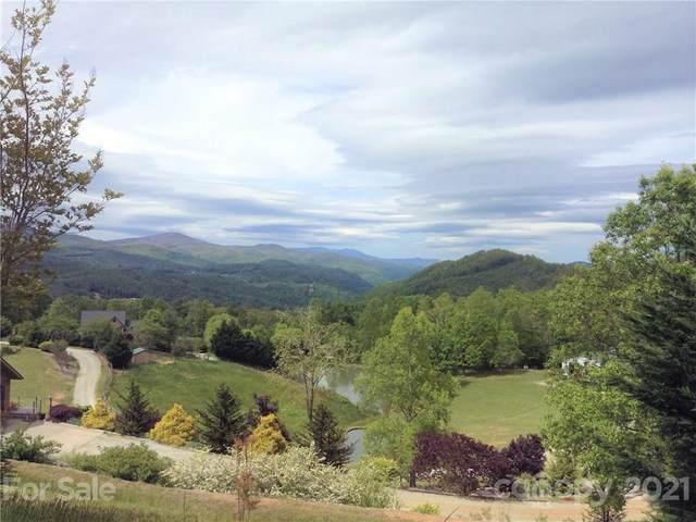 167 Osprey Lane, Hendersonville, NC 28792 (#3781178) :: Mossy Oak Properties Land and Luxury