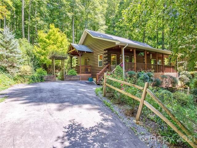 120 Forest Hill Road, Waynesville, NC 28785 (#3783362) :: Cloninger Properties