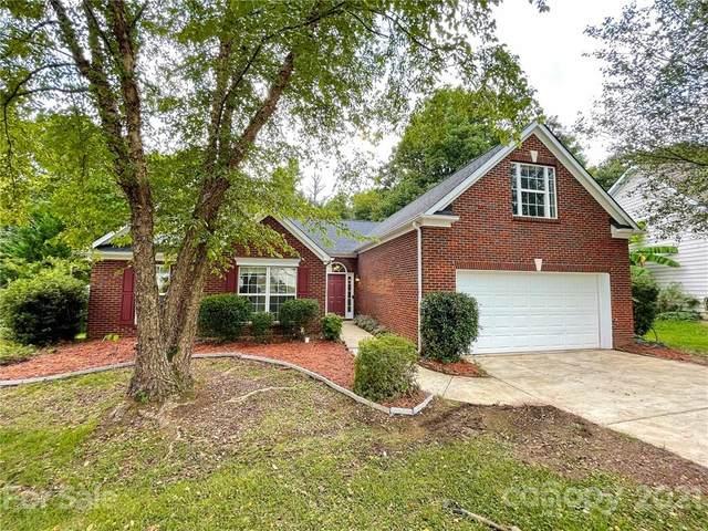 11417 Fox Hill Drive, Charlotte, NC 28269 (#3783680) :: Bigach2Follow with Keller Williams Realty