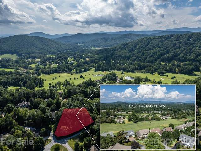 90 Glenberry Way #1, Mills River, NC 28759 (#3784267) :: Premier Realty NC