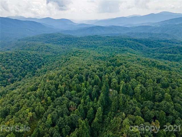TBD Laurel Mountain Trail, Black Mountain, NC 28711 (#3785368) :: The Premier Team at RE/MAX Executive Realty