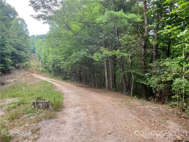 3024 Pearson Mountain Road, Boomer, NC 28606 (MLS #3788440) :: RE/MAX Impact Realty
