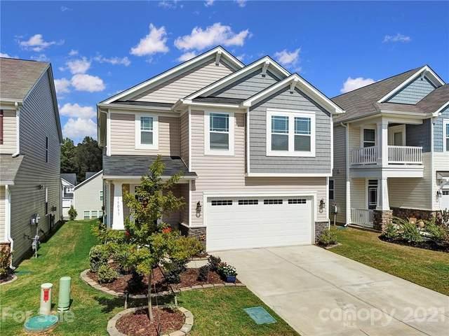 15033 Cordelia Drive, Charlotte, NC 28278 (#3792458) :: LePage Johnson Realty Group, LLC