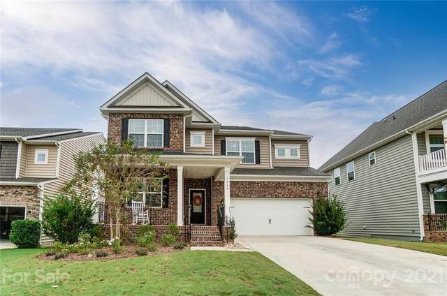 1988 Sapphire Meadow Drive, Fort Mill, SC 29715 (#3792582) :: Briggs American Homes