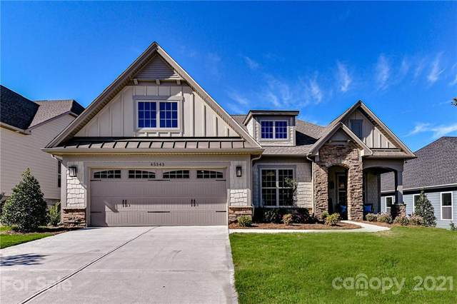 45343 Misty Bluff Drive #255, Charlotte, NC 28278 (#3793459) :: Lake Wylie Realty