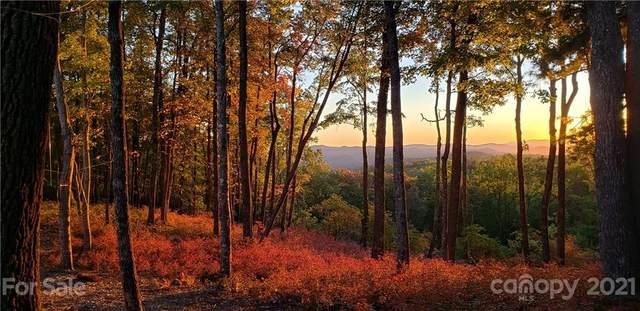 250 Kanasgowa Drive, Brevard, NC 28712 (#3793651) :: High Vistas Realty