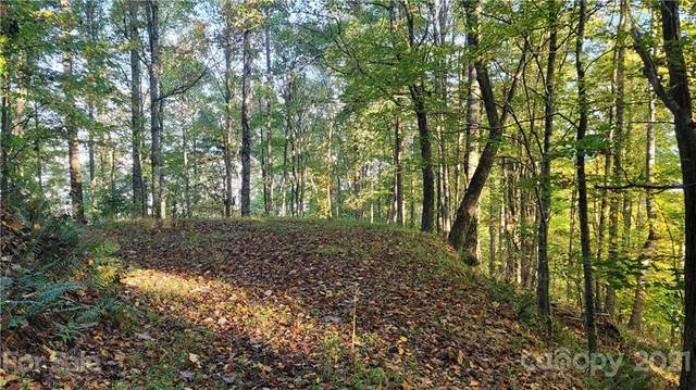Lot 19 & 20 Dickinson Drive, Clyde, NC 28721 (#3794021) :: BluAxis Realty