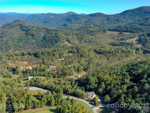 115 Mitchell View Drive, Hendersonville, NC 28792 (#3797542) :: Mossy Oak Properties Land and Luxury