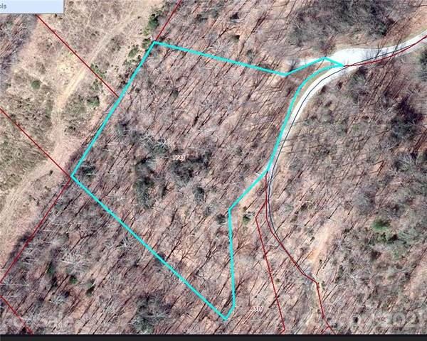 391 Stoneledge Trail #24, Arden, NC 28704 (#3798290) :: Homes Charlotte