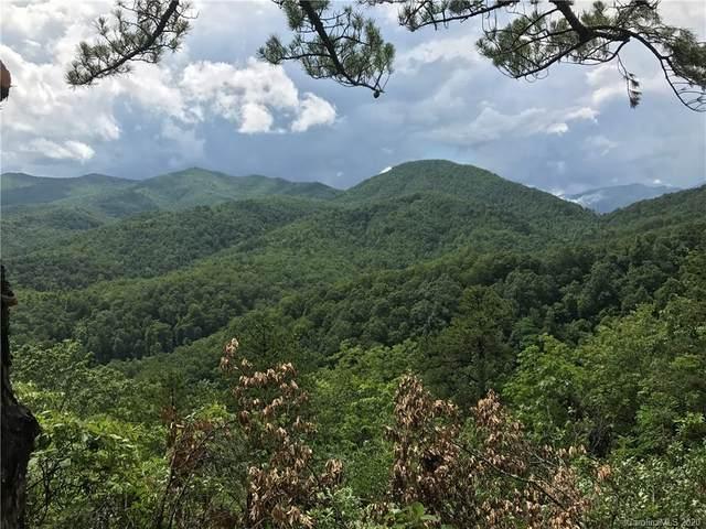 259 Winding Ridge Road #2, Black Mountain, NC 28711 (#3278688) :: Stephen Cooley Real Estate Group