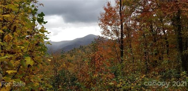 Lot 8 & 9 Roselyn Park Drive, Waynesville, NC 28785 (#3410246) :: Willow Oak, REALTORS®