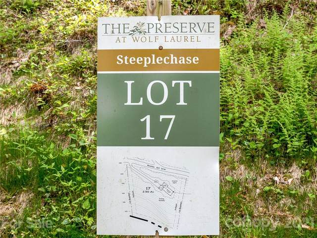 Lot 17 Mountain Gait Drive, Mars Hill, NC 28754 (#3414876) :: Carver Pressley, REALTORS®